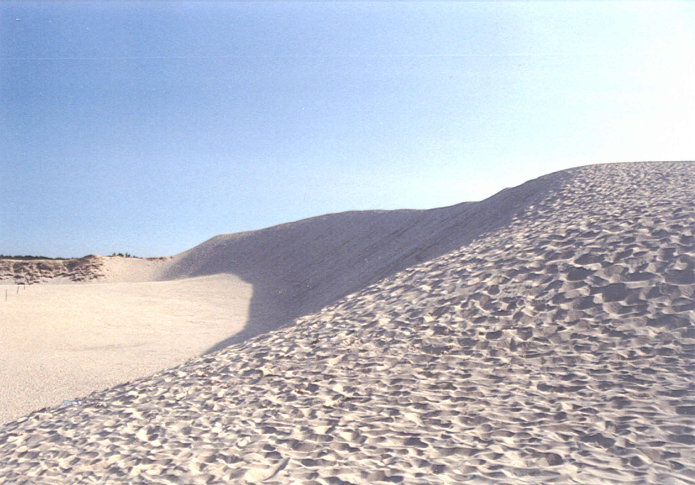 Die große Düne Laska Gora bei Leba. Foto: B.Jäger-Dabek