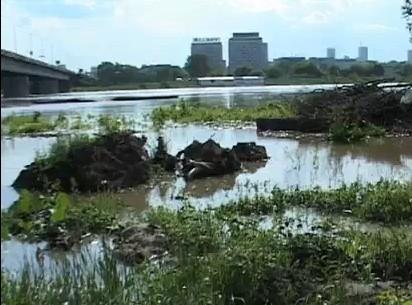 Das Hochwasser der Weichsel hat Warschau erreicht