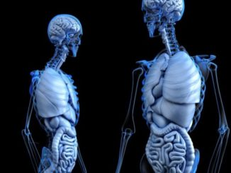 Künstliche Intelligenz in der Medizin