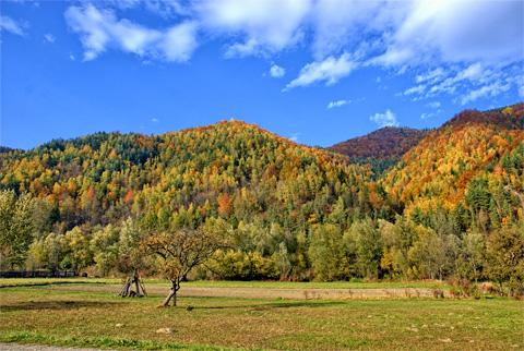 Natur pur in Polen, Pieniny, Foto: CC0, public domain