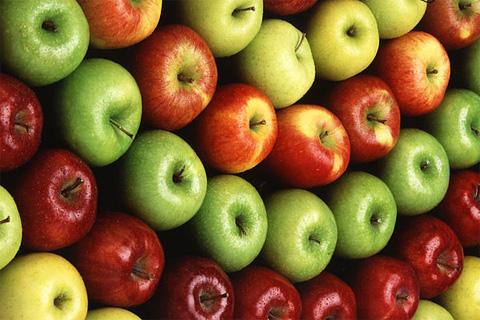 Apfelproduzent Polen, Foto: gemeinfrei, Scott Bauer, Agricultural Research Service